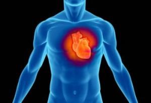 ferro-cuore-insufficienza-cardiaca-nutrizione